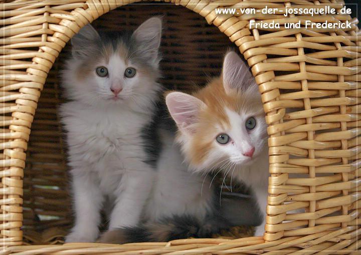 Frieda und Frederick